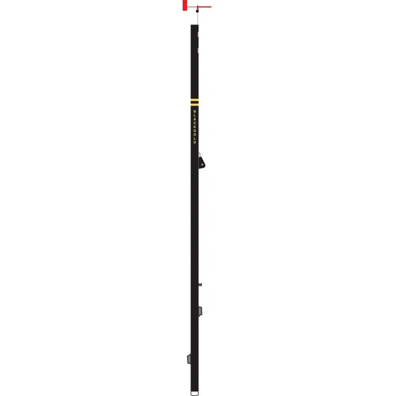 Optiparts BLACKGOLD mast. With rigging pack