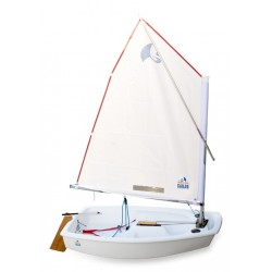 World Wide Sailor Opti